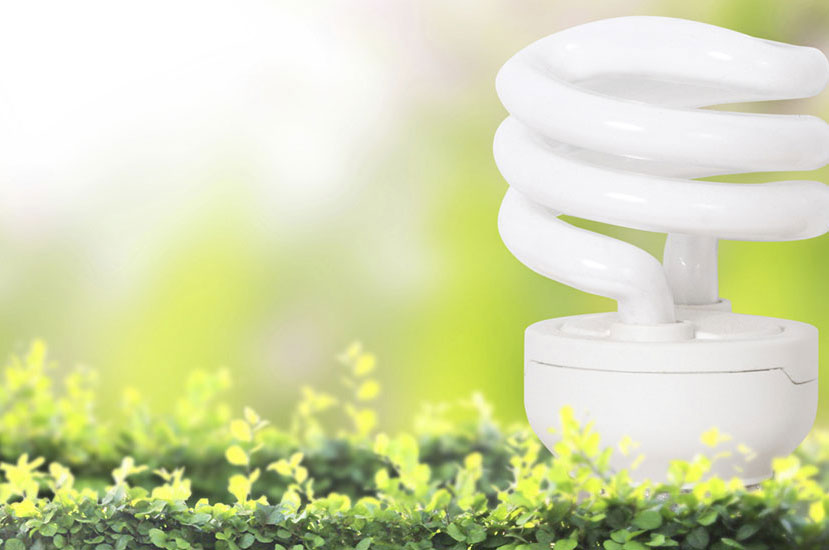 Green Jobs, Green Economy Initiative And P.O.W.E.R.