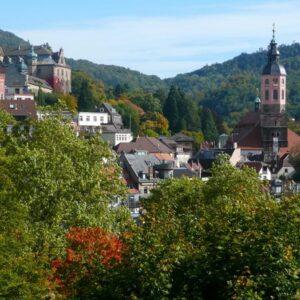 50th Annual Baden Baden Medical Week In Germany