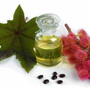 Castor Oil: An Essential For Health