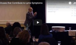 Lyme Disease: Viruses That Contribute To Lyme Symptoms With Dr. Thomas Rau