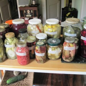 Nutrition: How To Produce Your Own Fermented Vegetables