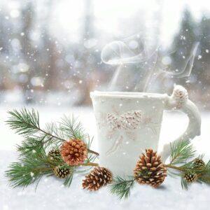Winter Wellness Tonic Recipe