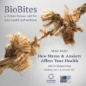 BioBlog: January BioBites To Focus On Stress & Anxiety